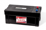 Lion-495