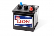Lion-203