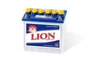 Lion-205