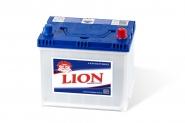 Lion-251