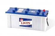 Lion-292