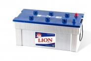 Lion-295