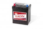 Lion-428