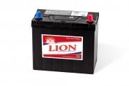 Lion-431