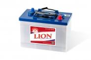 Lion-435
