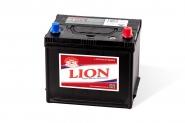Lion-451