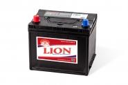 Lion-452