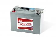 Lion-HZY-EV12-100