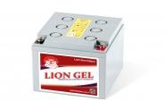 Lion-HZY-EV12-26