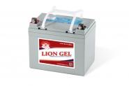 Lion-HZY-EV12-33