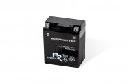 Lion-YTX20-BS